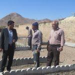 بازید شهردار کوهبنان از روند ساخت پارک محله ی امام صادق(ع)